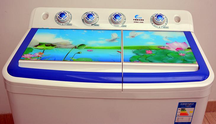 2kg 双桶洗衣机 xpb92-228s步步莲花